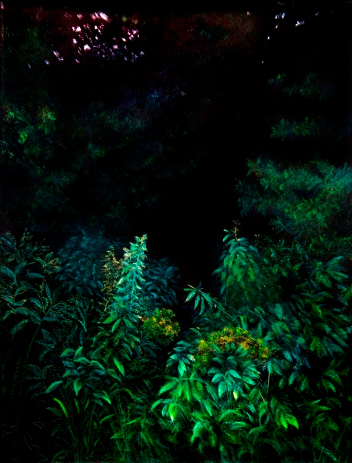 Gabriela Bettini - Entrada al bosque - ceras sobre papel - 150 x 200 cm - 2013 (1)