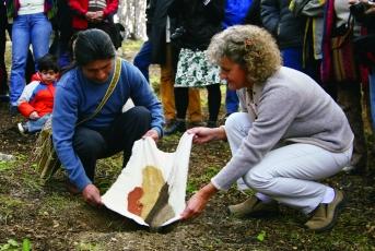 Recolección y entrega de tierras en Bosque de Yatana, Ushuaia, Tierra del Fuego, 2008 - Bienal del Fin del Mundo - performance junto con René Vergara