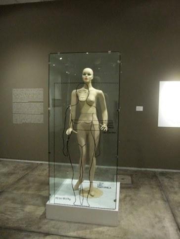 Perfil de la Mujer Peruana (1981), reconstruida para la exposición de Galería ICPNA, Lima, 2010 .